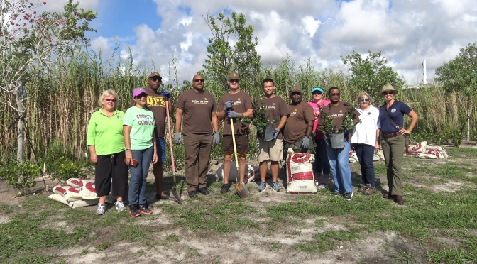 Keep America Beautiful Grant, UPS Foundation Help Plant Trees in Stub Canal Park